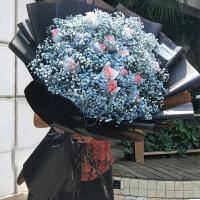 满天星干花生日礼物 同款巨型进口满天星大花束生日表白鲜花速递全国上海杭州速递 不含花瓶