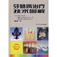 牙髓病治疗技术图解 (美)比尔,(美)鲍曼,(美)基尔巴萨,潘亚萍 辽宁科学技术出版社
