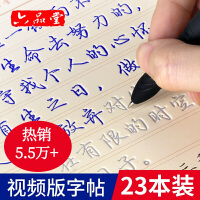 六品堂 10本装 魔幻凹槽练字帖成人行书行楷书练字板 硬笔书法钢笔临摹练字贴速成练字神器套装