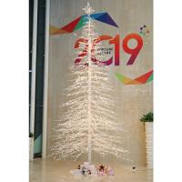 圣诞节装饰品1.5米圣诞树家用套餐1.8米商场橱窗装饰灯光树3/5米