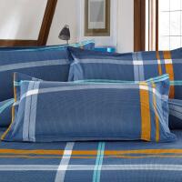 枕套 枕套单人枕头套床上用品一对拍二TD 48cmX74cm