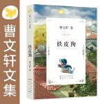 曹文轩文集-铁皮狗