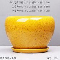 花盆长寿花花盆室内陶瓷玉树花盆儿彩色花盆糖果色陶瓷