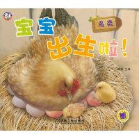 宝宝出生啦!鸟类