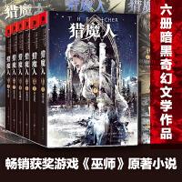 猎魔人1-6 全6册 套装 PS4 XBOX经典游戏《巫师》原著小说 正版畅销外国文学奇幻魔幻小说 (1)白狼崛起 重