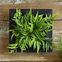 创意家居立体仿真多肉植物墙上装饰品客厅餐厅卧室墙面壁饰壁挂件