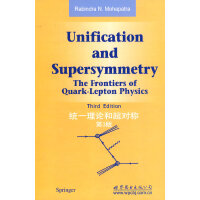 统一理论和超对称 第3版
