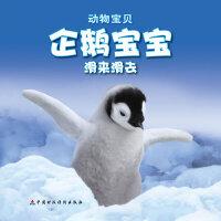 企鹅宝宝滑来滑去