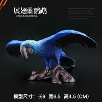 儿童野生动物园模型玩具套装鸟