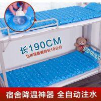 学生单双人降温消暑冰枕水床大波浪水床夏季冰垫水床垫冷水凉垫