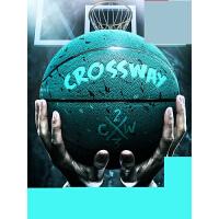 【支持礼品卡】篮球儿童室外耐磨水泥地57号比赛训练球街球学生v5u