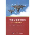 智能空战对抗训练关键技术研究