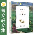 曹文轩文集-三角地