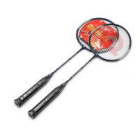 强力 羽毛球拍 控球型 学生业余初级训练拍 2支装 313