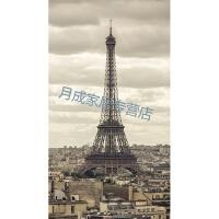 埃菲尔铁塔壁画美式玄关装饰画竖版入户走廊过道巴黎埃菲尔铁塔挂画简约现代壁画 A-The Eiffel Tower. 8