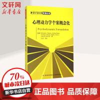 心理动力学个案概念化 中国轻工业出版社