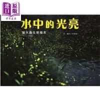 【中商原版】付新华《水中的光亮》萤火虫生态绘本精装港台原版