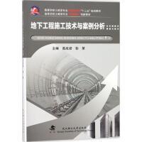 地下工程施工技术与案例分析 高成梁,彭第 主编