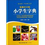 智趣全功能小学生字典(64开本)