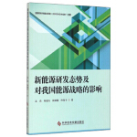 新能源研发态势及对我国能源战略的影响 孟浩,陈建东,陈颖健,佟贺丰 科学技术文献出版社