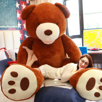 玩偶送女友生日礼物大号泰迪熊猫公仔美国抱抱熊毛绒玩具布娃娃