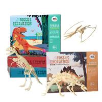 儿童考古挖掘* 霸王龙考古DIY手工拼装化石玩具模型