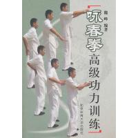 咏春拳高级功力训练【正版书籍,满额优惠,可开发票】