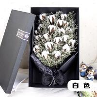 棉花干花花束礼盒白色木棉花毕业拍照送男女朋友闺蜜生日礼物