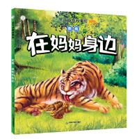 亲子动物故事绘― 老虎:在妈妈身边