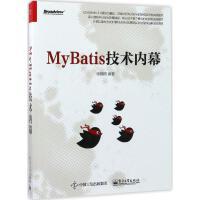 MyBatis技术内幕 徐郡明 编著