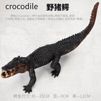 实心仿真动物模型玩具野生动物园鳄鱼尼罗* *鳄 儿童礼物SN3235