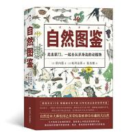 福音馆图鉴系列 9:自然图鉴