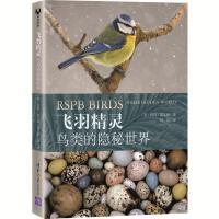 飞羽精灵:鸟类的隐秘世界 (彩图版) [英]彼得・霍尔顿著曾晨 译 9787302557517 清华大学出版社【直发】