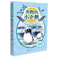 小学生科学童话:奔跑的小企鹅
