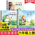 六年级课外阅读推荐书籍 童年 爱的教育 小英雄雨来全3册快乐读书吧六年级上册必读世界名著小学生课外阅读经典儿童读物6-