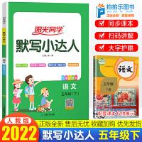 阳光同学默写小达人五年级下册 部编人教版