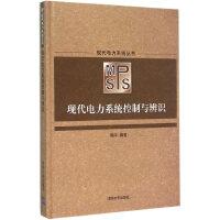 现代电力系统控制与辨识(现代电力系统丛书)