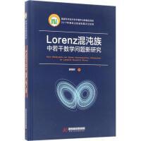 Lorenz混沌族中若干数学问题新研究 廖晓昕