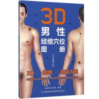 3D男性经络穴位图册(白金珍藏修订版)