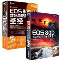 /佳能Canon EOS 70D单反摄影圣经+摄影技巧大全 佳能70d摄影教程书籍 佳能70d摄影教材 佳能单反摄影从