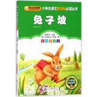 兔子坡(彩图注音版)/小学生语文新课标必读丛书