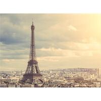 风景装饰画巴黎埃菲尔铁塔1000片木质拼图1500玩具礼物