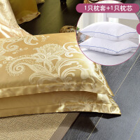 枕芯加枕套套装学生宿舍用枕头 床上用品单人枕一对拍2J 光辉