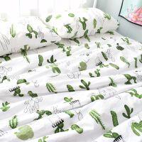 多肉仙人掌绿色植物北欧棉斜纹床单被套枕套可定做三四件套 多肉仙人掌