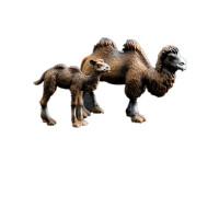 儿童仿真模型玩具野生动物园世界沙漠之舟蒙古骆驼单双峰骆驼幼崽 骆驼一家(1大1小)