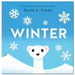 Winter: A Pop-Up Book冬天 英文原版立体书 趣味儿童读物