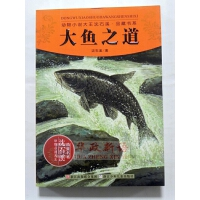 正版 大鱼之道 浙江少年儿童出版社