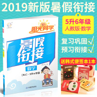 2019宇轩图书阳光同学暑假衔接5升6数学RJ六年级上册