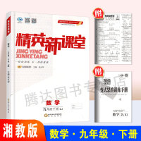 2020春 精英新课堂 9/九年级下册 数学 湘教版 XJ 附赠变式思维训练手册