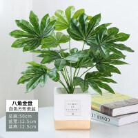 【品牌热卖】北欧仿真植物装饰创意小摆件客厅桌面盆栽家居室内假绿植盆景